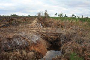exploitant forestier landes