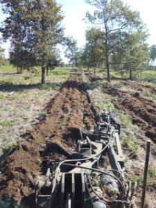 tracteur équipé forestier